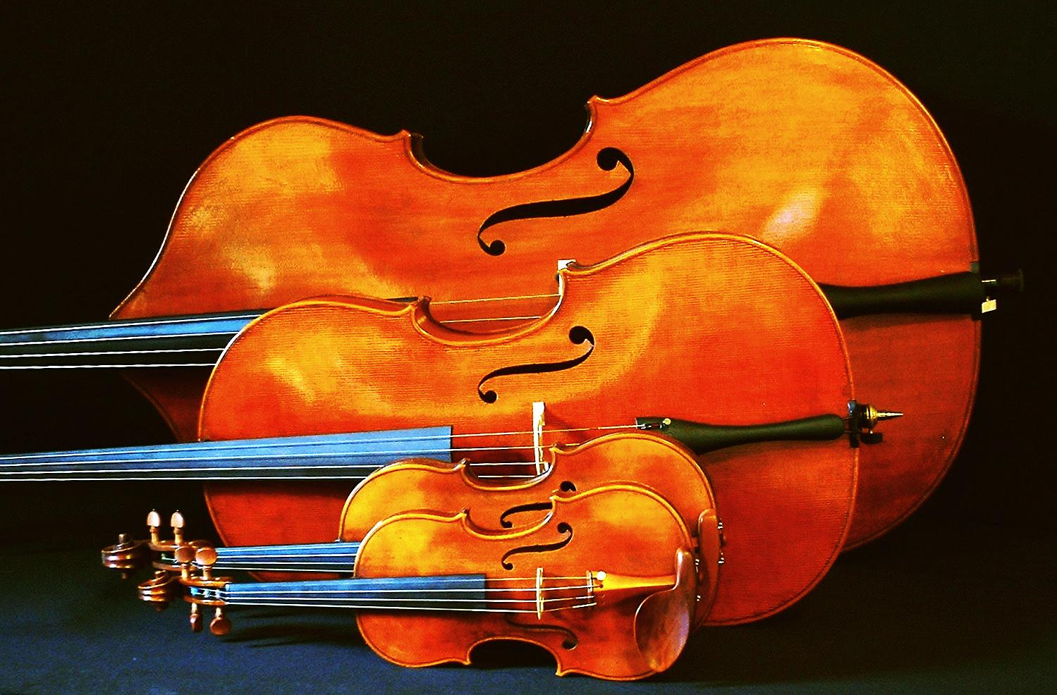 South Kingstown Community String Orchestra